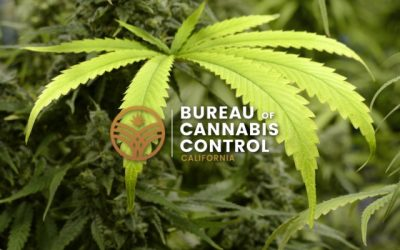 bureau of cannabis control updated cannabis regulations changes