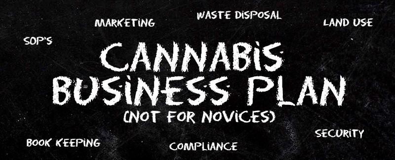 professional-consulting-legal-cannabis-applications