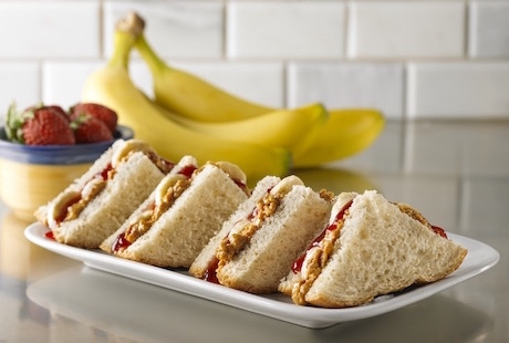 stoner snacks peanut butter and jelly sandwich