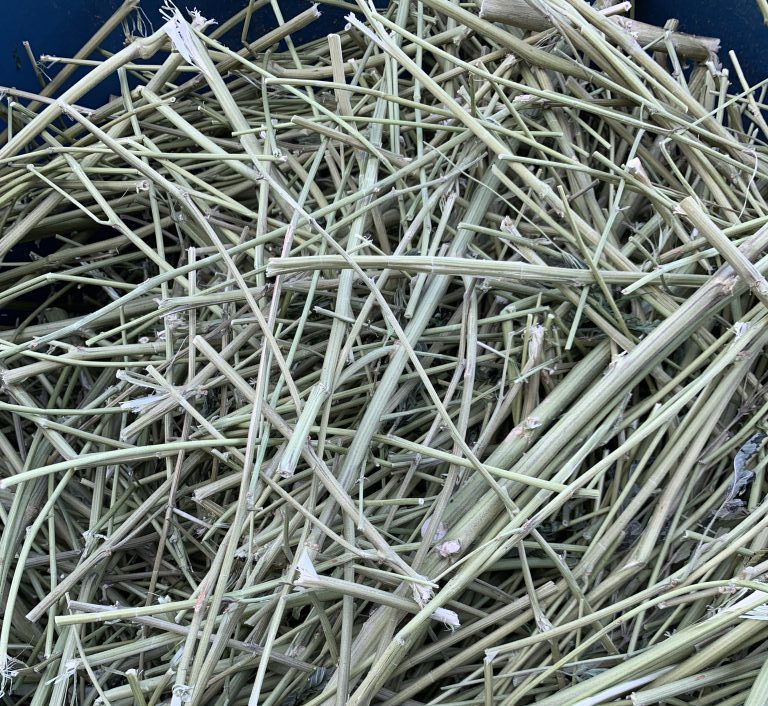 Cannabis Waste hurds, stems, stalks