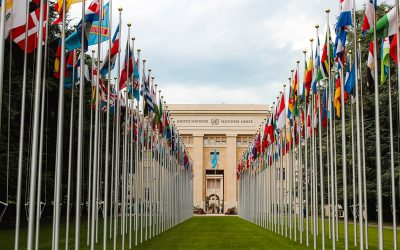 united nations cannabis who