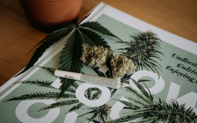 cannabis magazine and joint