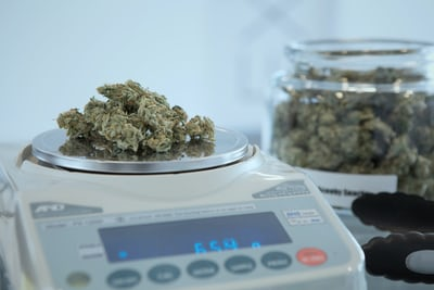 Choose the Right Cannabis Dispensary for your needs