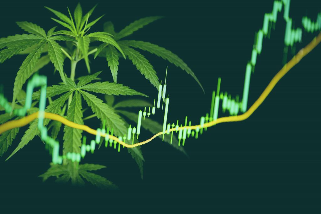the best cannabis stocks marijuana stocks cannabis investors should know about
